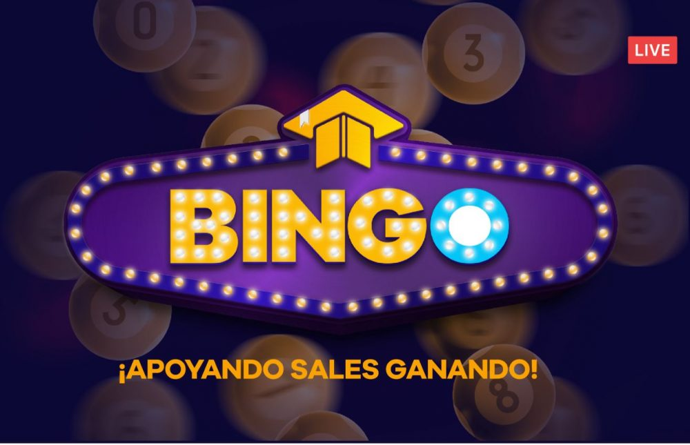 bingo techo