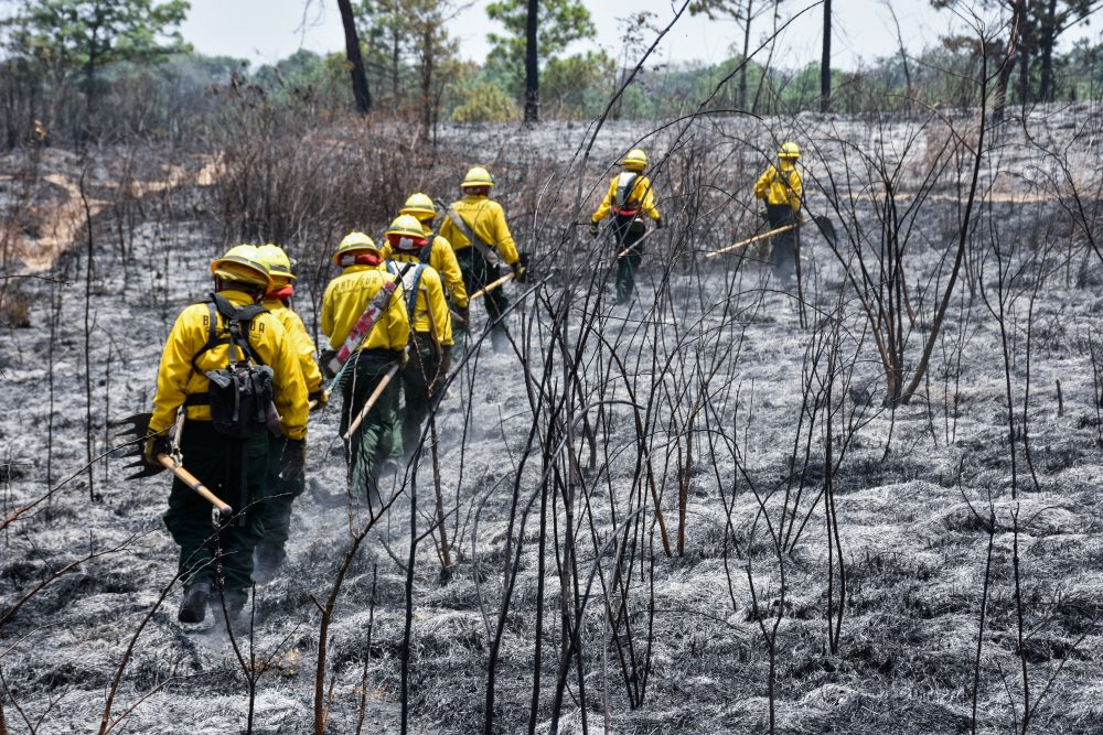 bomberos-incendios INAB