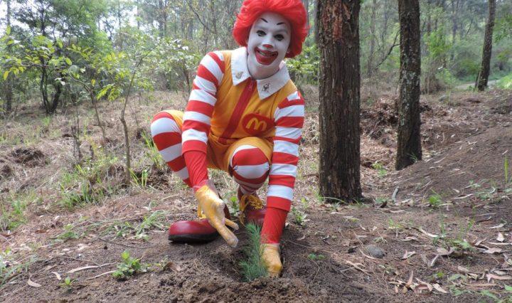 Ronald McDonald arbol INAB