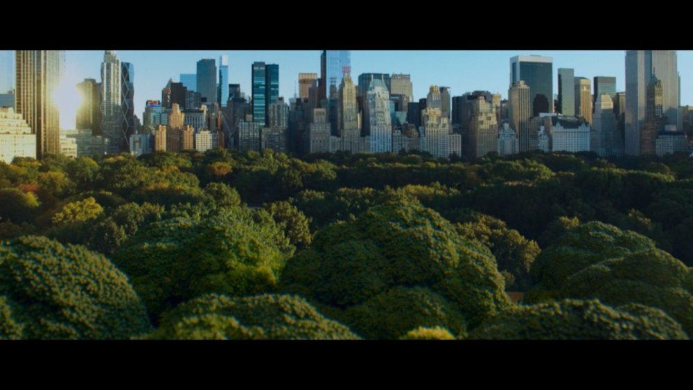 Dia mundial del medio ambiente LG