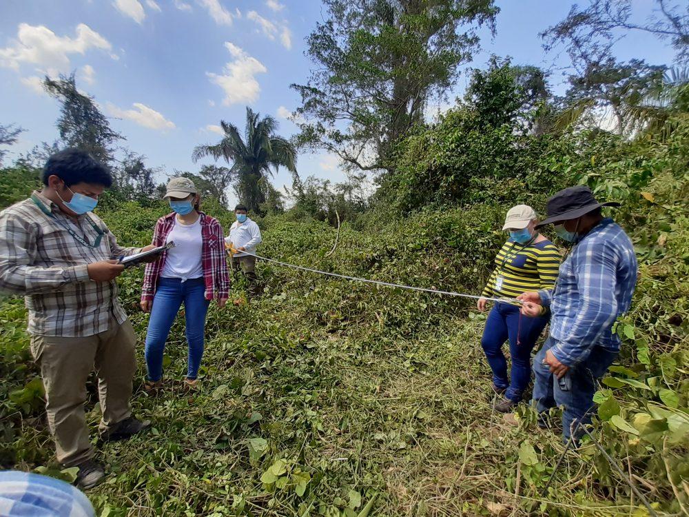 inventario forestal nacional de guatemala INAB CONAP
